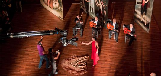 Flamenco, Flamenco de Carlos Saura